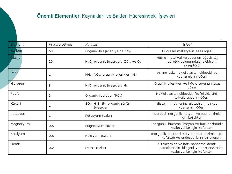 Önemli Elementler, Kaynakları ve Bakteri Hücresindeki İşlevleri