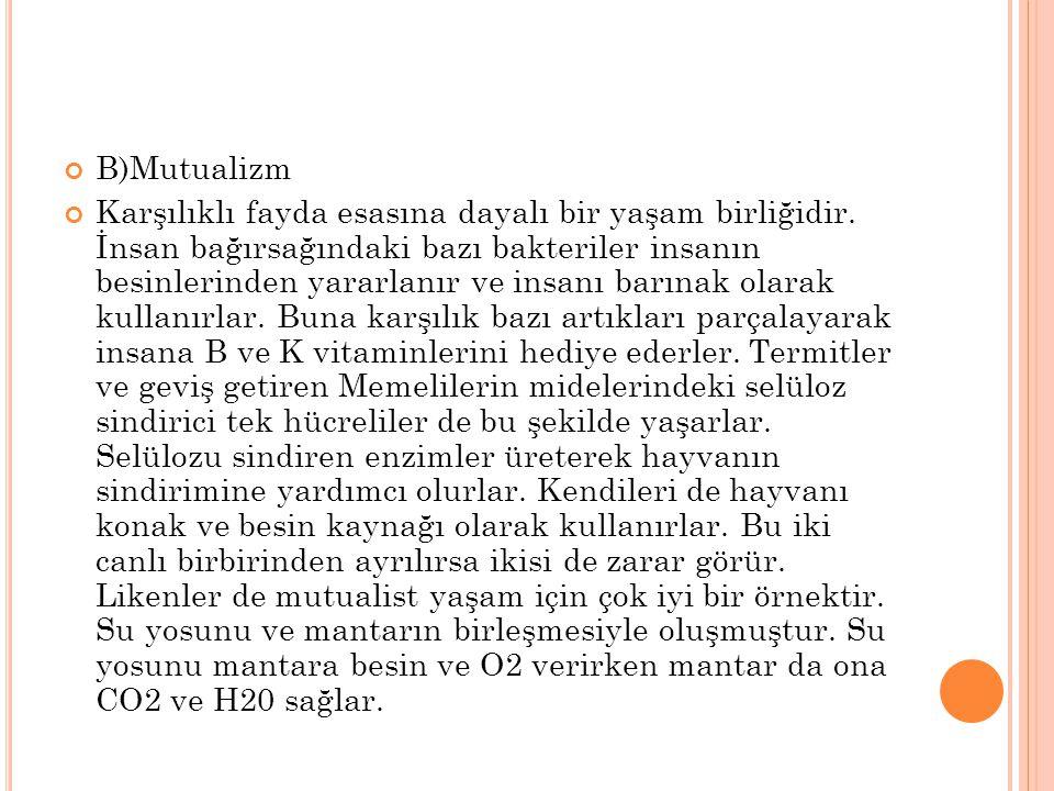 B)Mutualizm