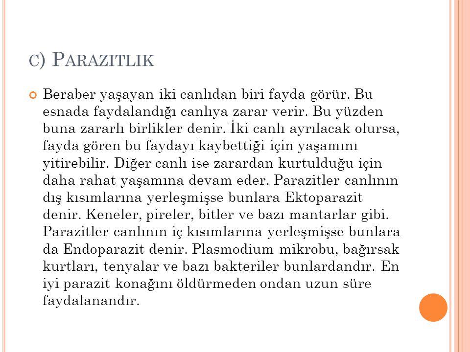 c) Parazitlik