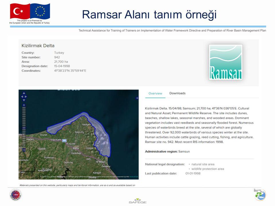 Ramsar Alanı tanım örneği