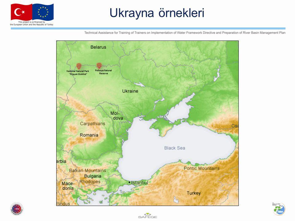 Ukrayna örnekleri