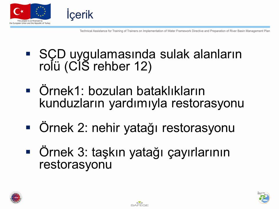 SÇD uygulamasında sulak alanların rolü (CIS rehber 12)