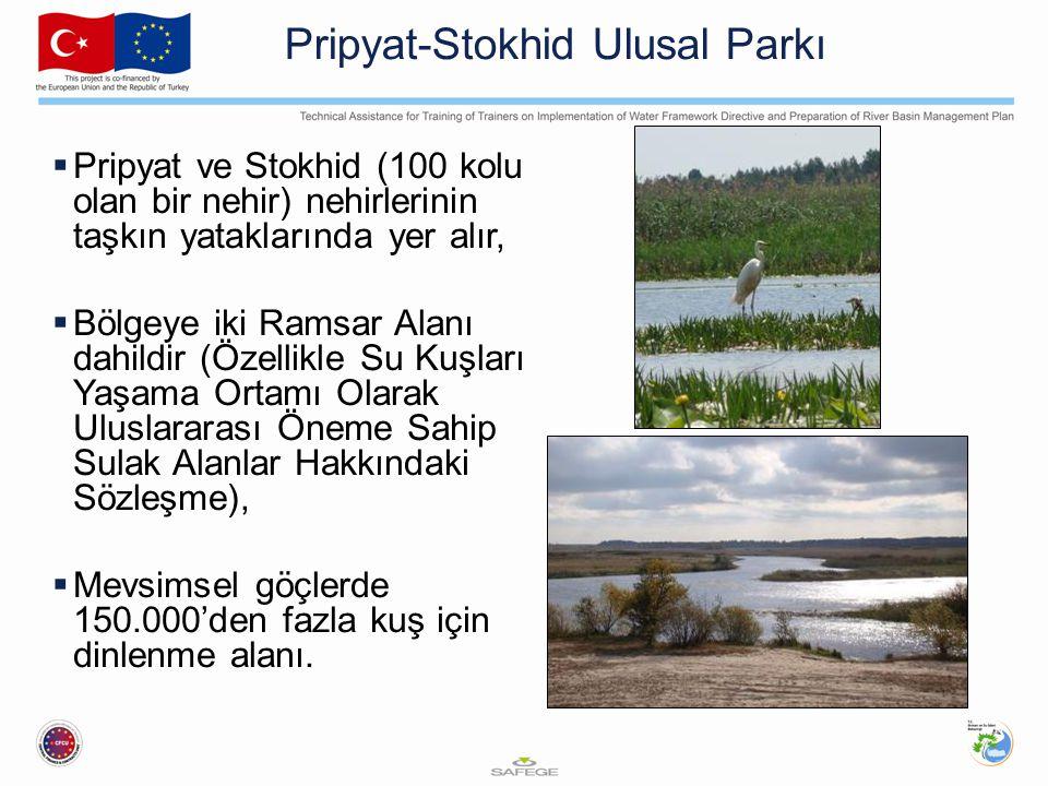 Pripyat-Stokhid Ulusal Parkı