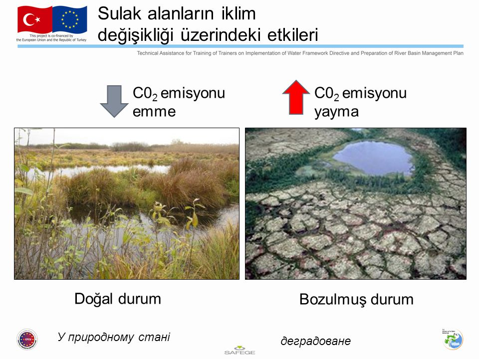 Sulak alanların iklim değişikliği üzerindeki etkileri