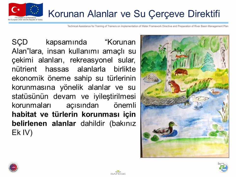Korunan Alanlar ve Su Çerçeve Direktifi