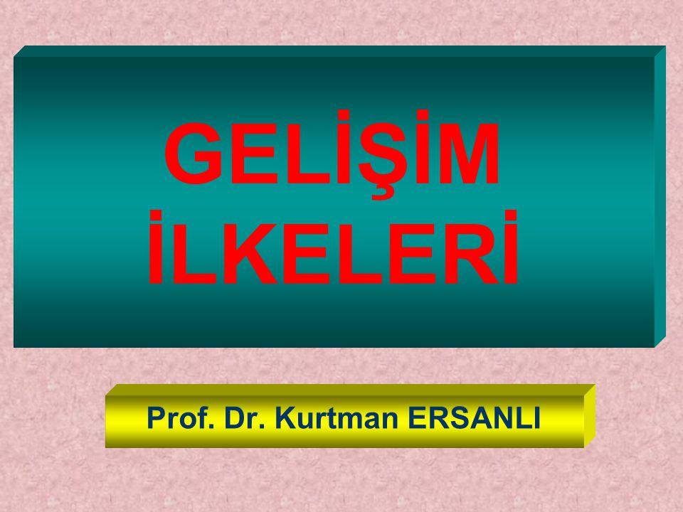 Prof. Dr. Kurtman ERSANLI