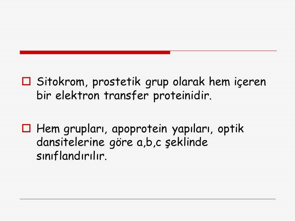 Sitokrom, prostetik grup olarak hem içeren bir elektron transfer proteinidir.