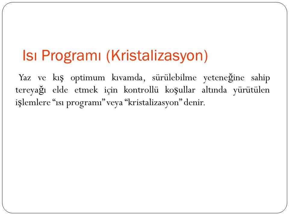 Isı Programı (Kristalizasyon)