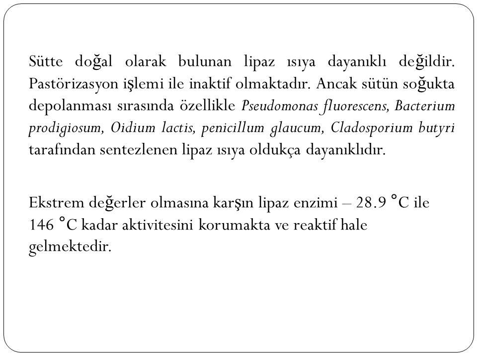 Sütte doğal olarak bulunan lipaz ısıya dayanıklı değildir