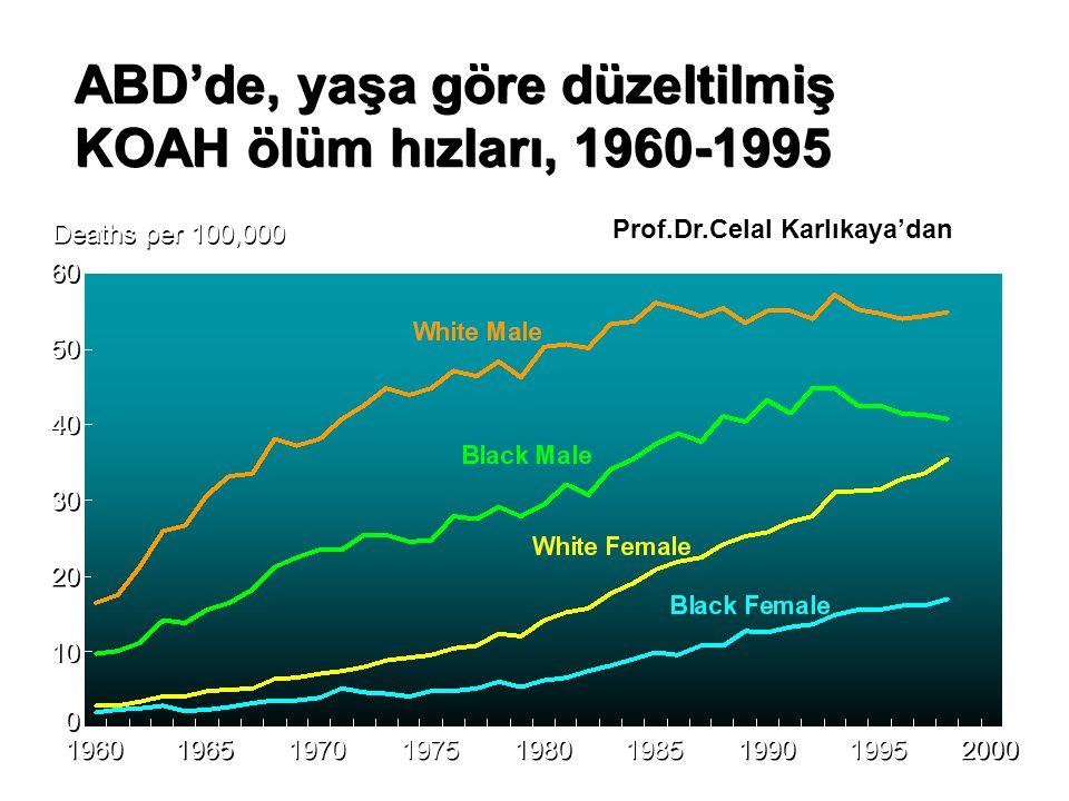 ABD'de, yaşa göre düzeltilmiş KOAH ölüm hızları, 1960-1995