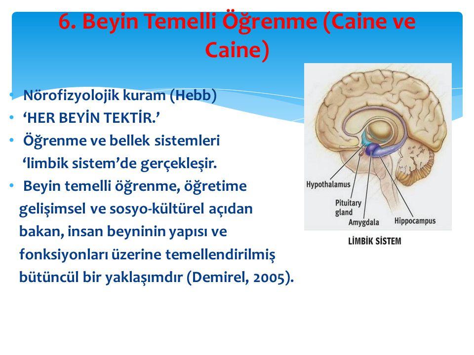 6. Beyin Temelli Öğrenme (Caine ve Caine)
