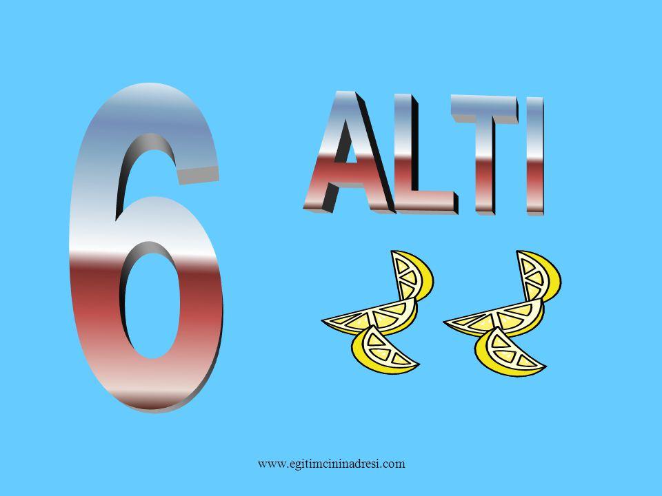 6 ALTI www.egitimcininadresi.com