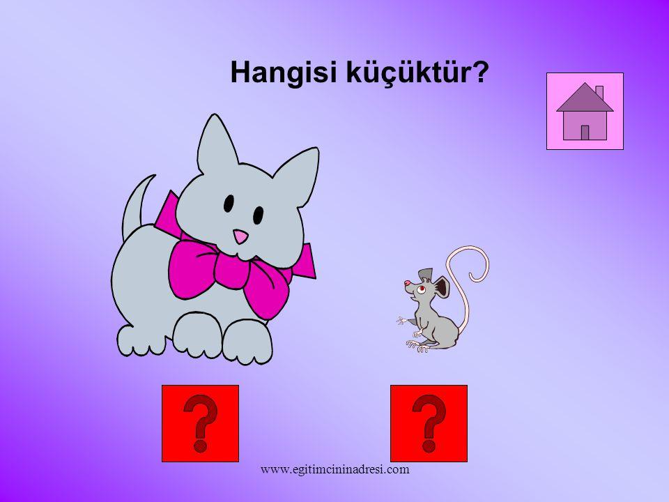 Hangisi küçüktür www.egitimcininadresi.com