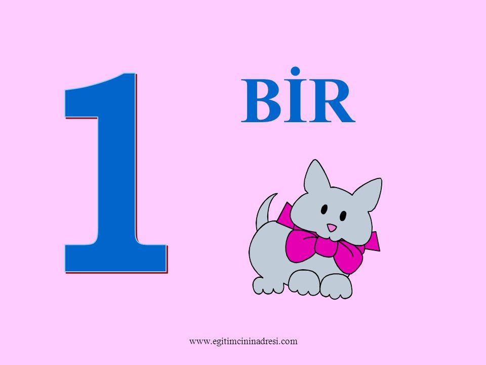 BİR 1 www.egitimcininadresi.com