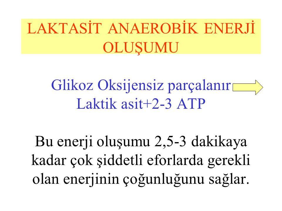 LAKTASİT ANAEROBİK ENERJİ OLUŞUMU Glikoz Oksijensiz parçalanır Laktik asit+2-3 ATP Bu enerji oluşumu 2,5-3 dakikaya kadar çok şiddetli eforlarda gerekli olan enerjinin çoğunluğunu sağlar.