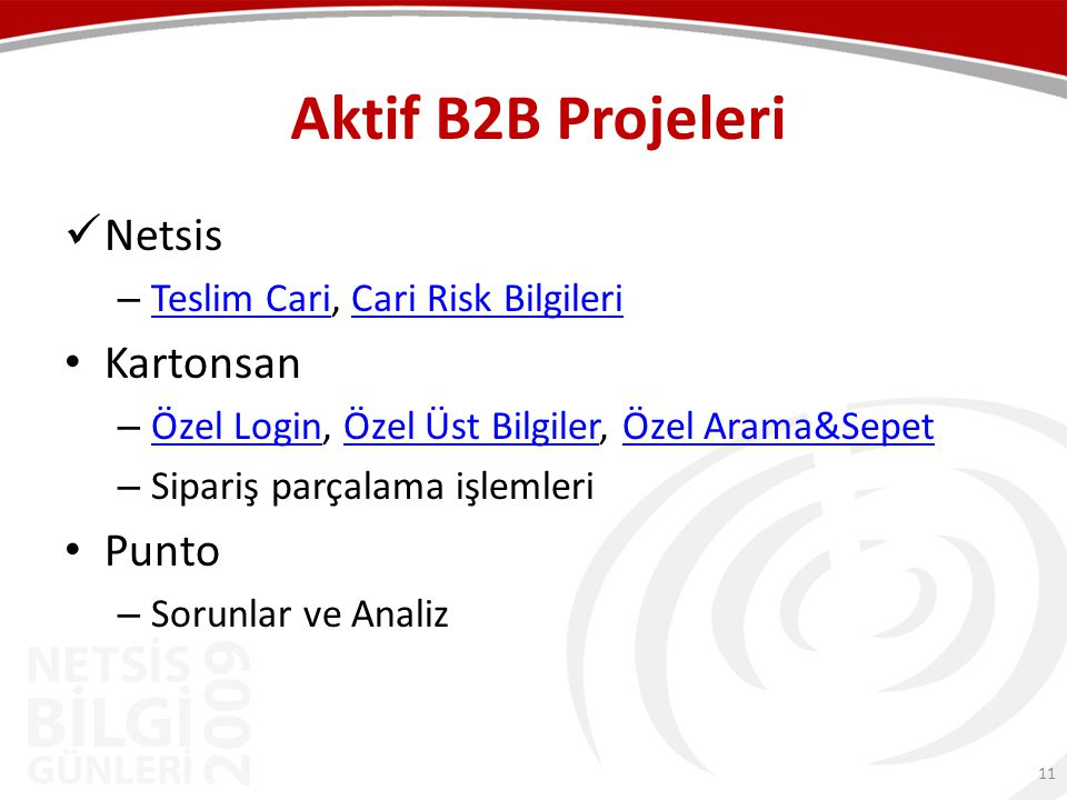 Aktif B2B Projeleri Netsis Kartonsan Punto