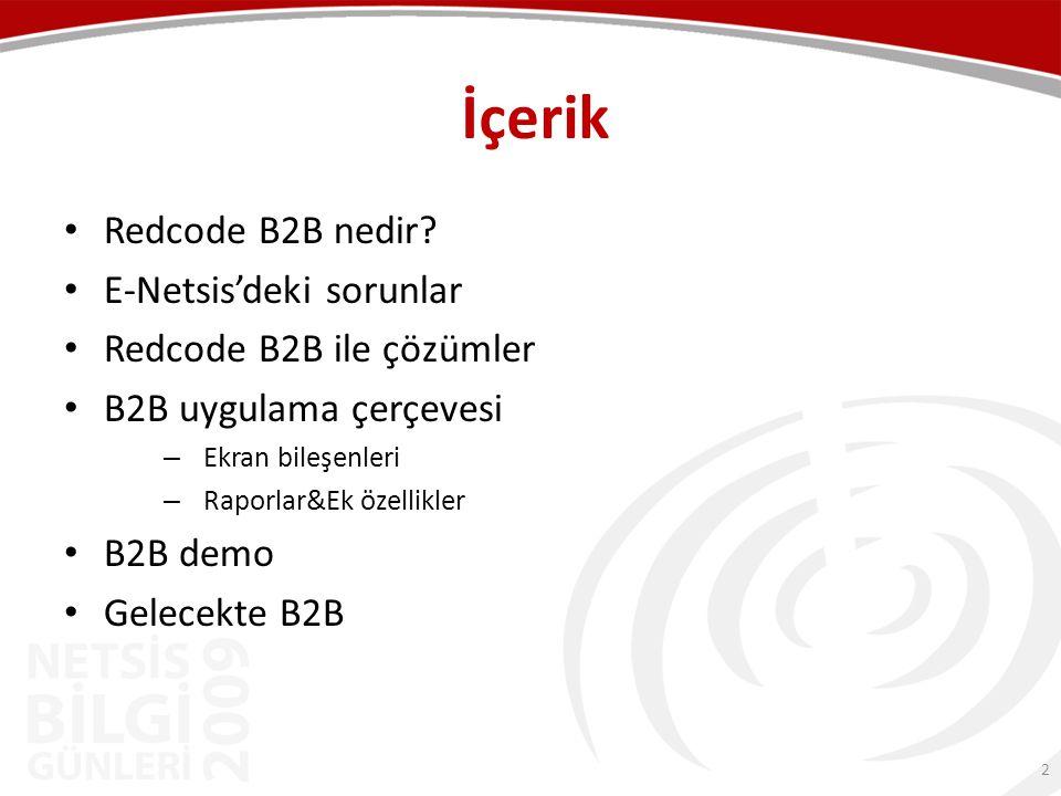 İçerik Redcode B2B nedir E-Netsis'deki sorunlar