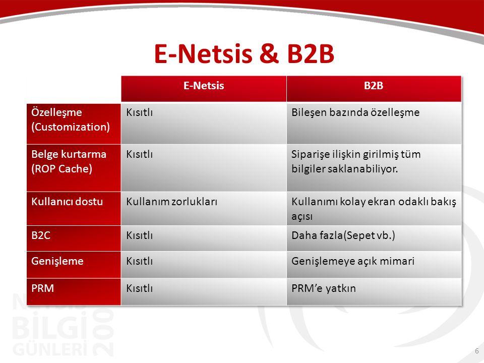 E-Netsis & B2B E-Netsis B2B Özelleşme (Customization) Kısıtlı