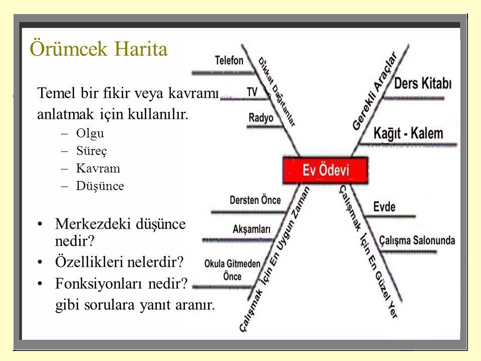 Örümcek Harita Temel bir fikir veya kavramı anlatmak için kullanılır.