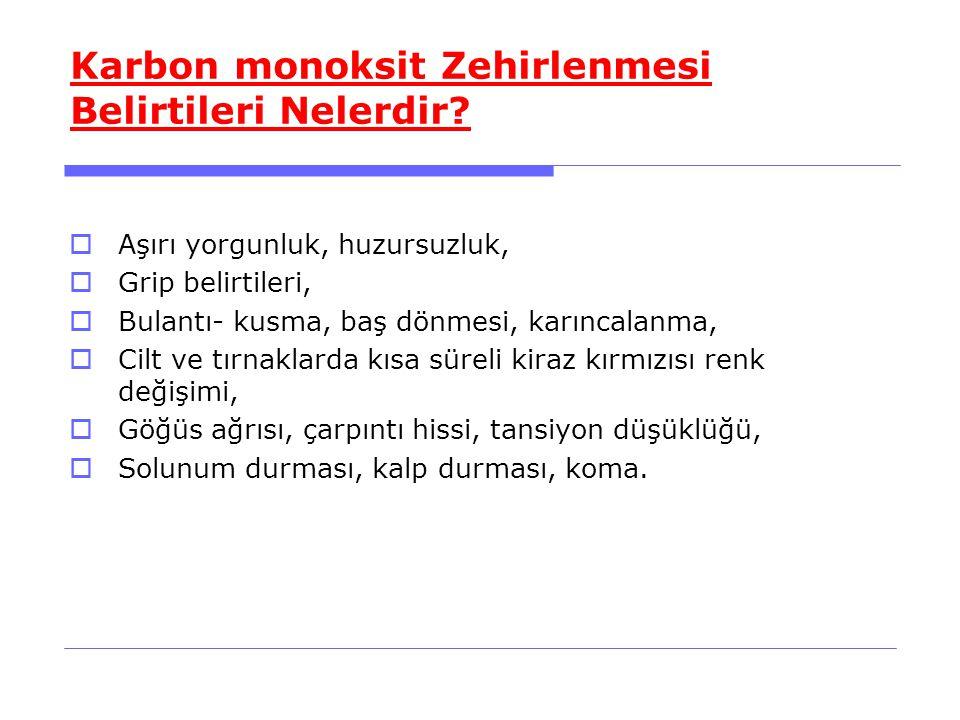 Karbon monoksit Zehirlenmesi Belirtileri Nelerdir
