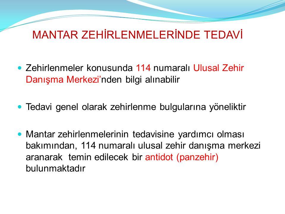 MANTAR ZEHİRLENMELERİNDE TEDAVİ