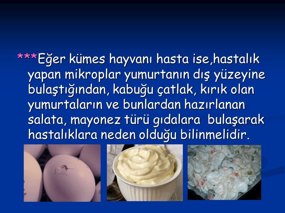 ***Eğer kümes hayvanı hasta ise,hastalık yapan mikroplar yumurtanın dış yüzeyine bulaştığından, kabuğu çatlak, kırık olan yumurtaların ve bunlardan hazırlanan salata, mayonez türü gıdalara bulaşarak hastalıklara neden olduğu bilinmelidir.