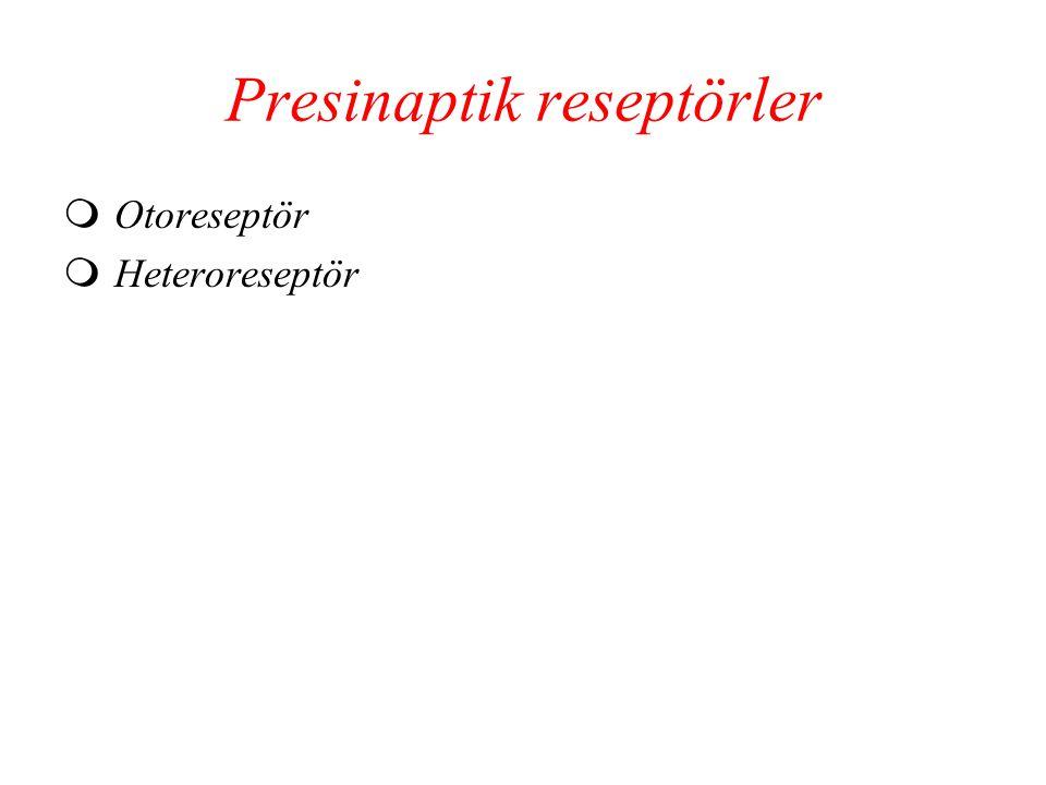 Presinaptik reseptörler