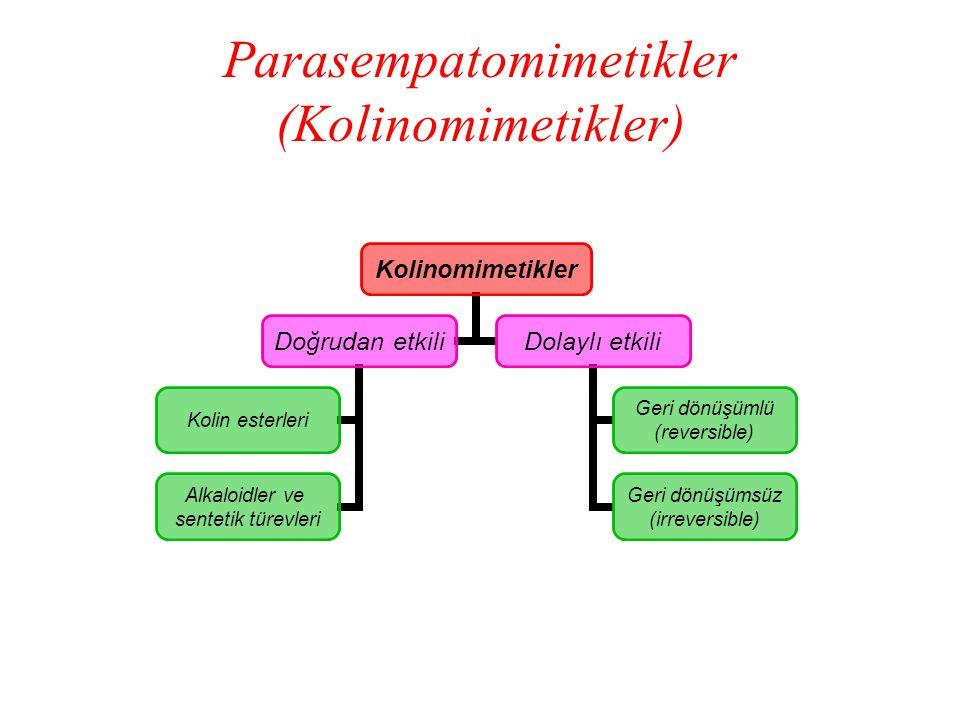 Parasempatomimetikler (Kolinomimetikler)