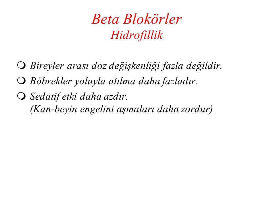 Beta Blokörler Hidrofillik