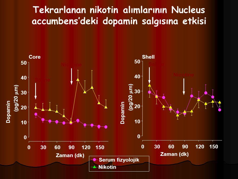 Tekrarlanan nikotin alımlarının Nucleus accumbens'deki dopamin salgısına etkisi