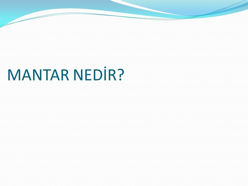 MANTAR NEDİR