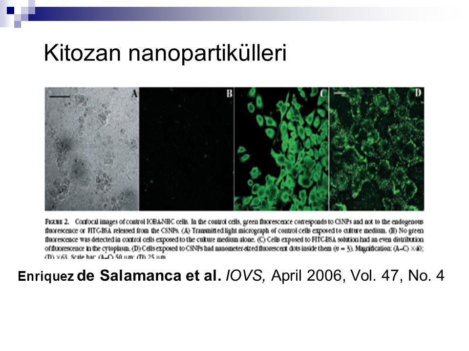 Enriquez de Salamanca et al. IOVS, April 2006, Vol. 47, No. 4