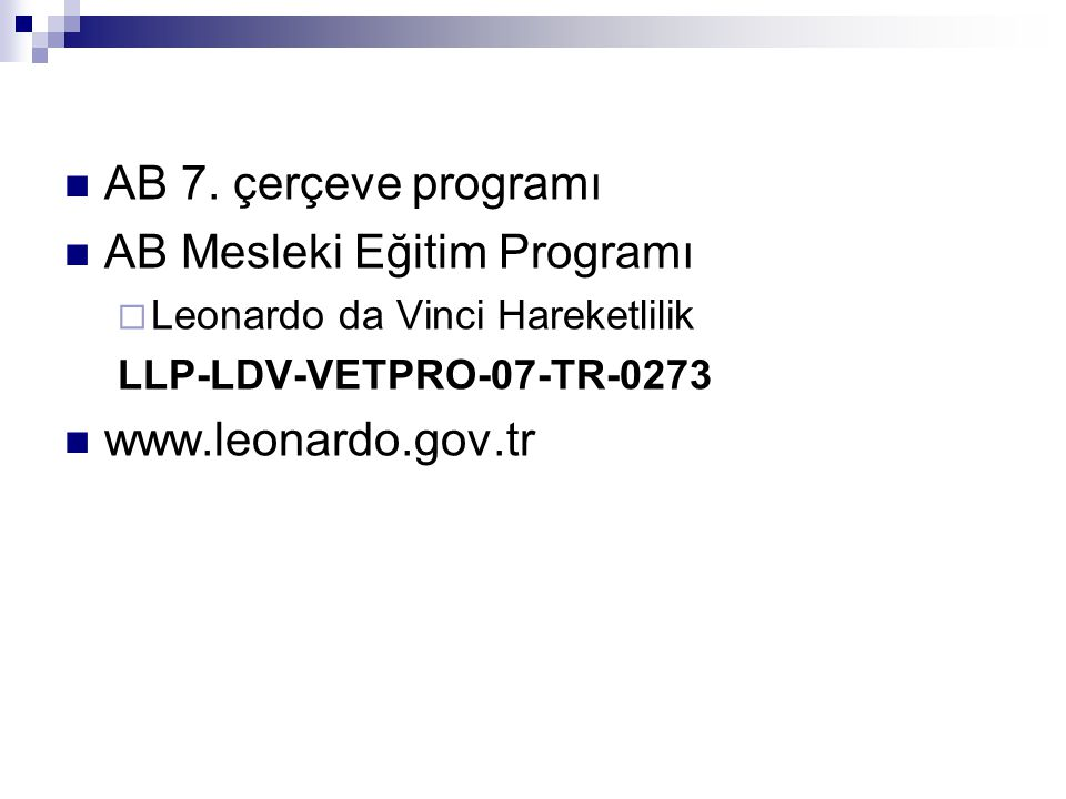 AB Mesleki Eğitim Programı