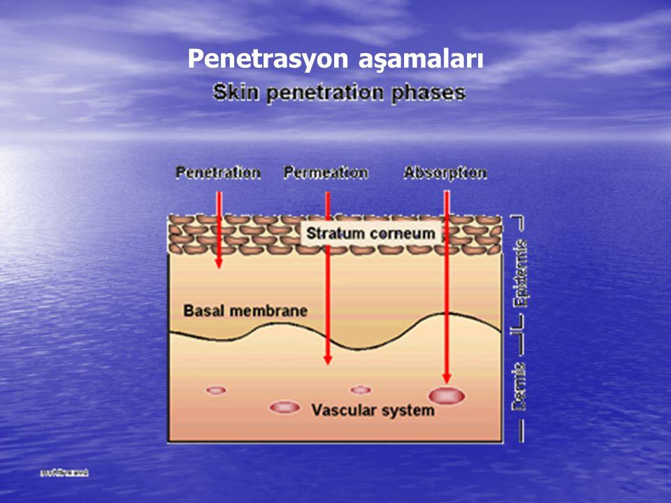 Penetrasyon aşamaları