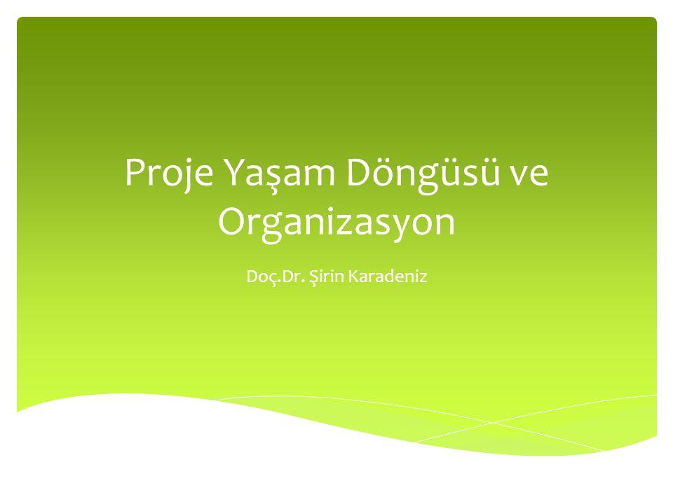 Proje Yaşam Döngüsü ve Organizasyon