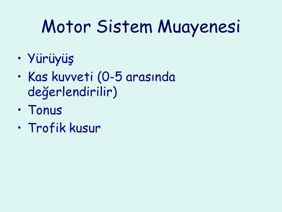 Motor Sistem Muayenesi