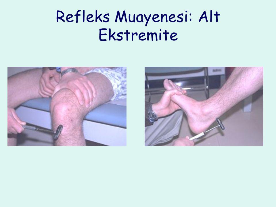 Refleks Muayenesi: Alt Ekstremite