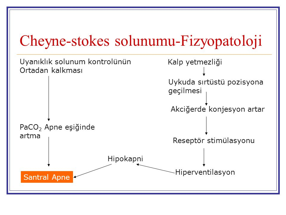 Cheyne-stokes solunumu-Fizyopatoloji