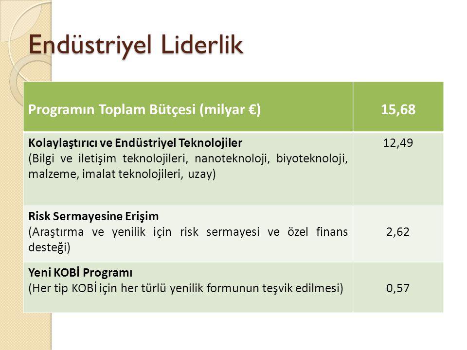 Endüstriyel Liderlik Programın Toplam Bütçesi (milyar €) 15,68