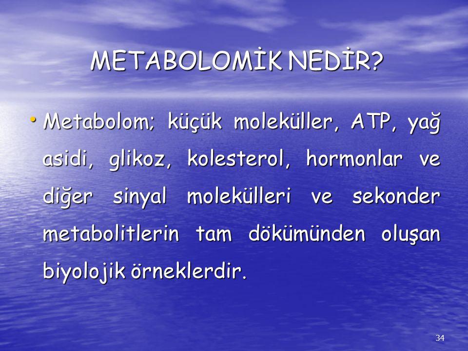 METABOLOMİK NEDİR