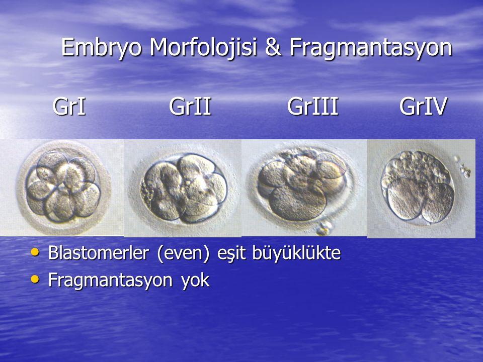 Embryo Morfolojisi & Fragmantasyon GrI GrII GrIII GrIV