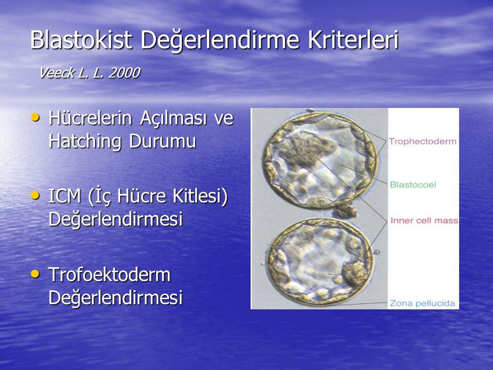 Blastokist Değerlendirme Kriterleri Veeck L. L. 2000