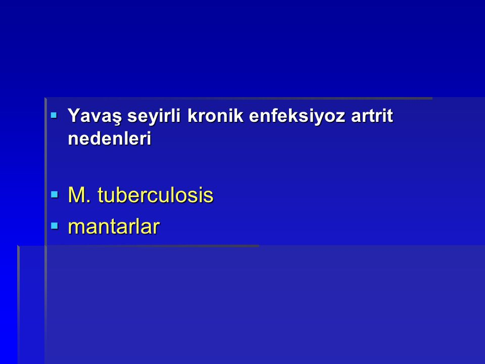 M. tuberculosis mantarlar