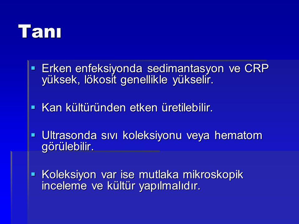 Tanı Erken enfeksiyonda sedimantasyon ve CRP yüksek, lökosit genellikle yükselir. Kan kültüründen etken üretilebilir.