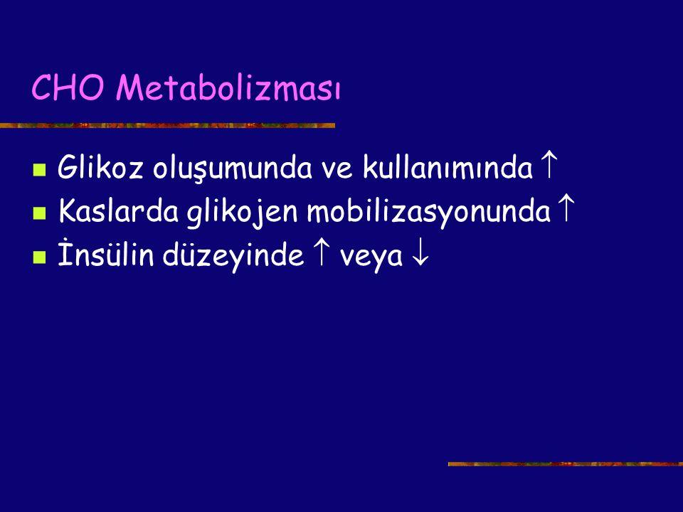 CHO Metabolizması Glikoz oluşumunda ve kullanımında 