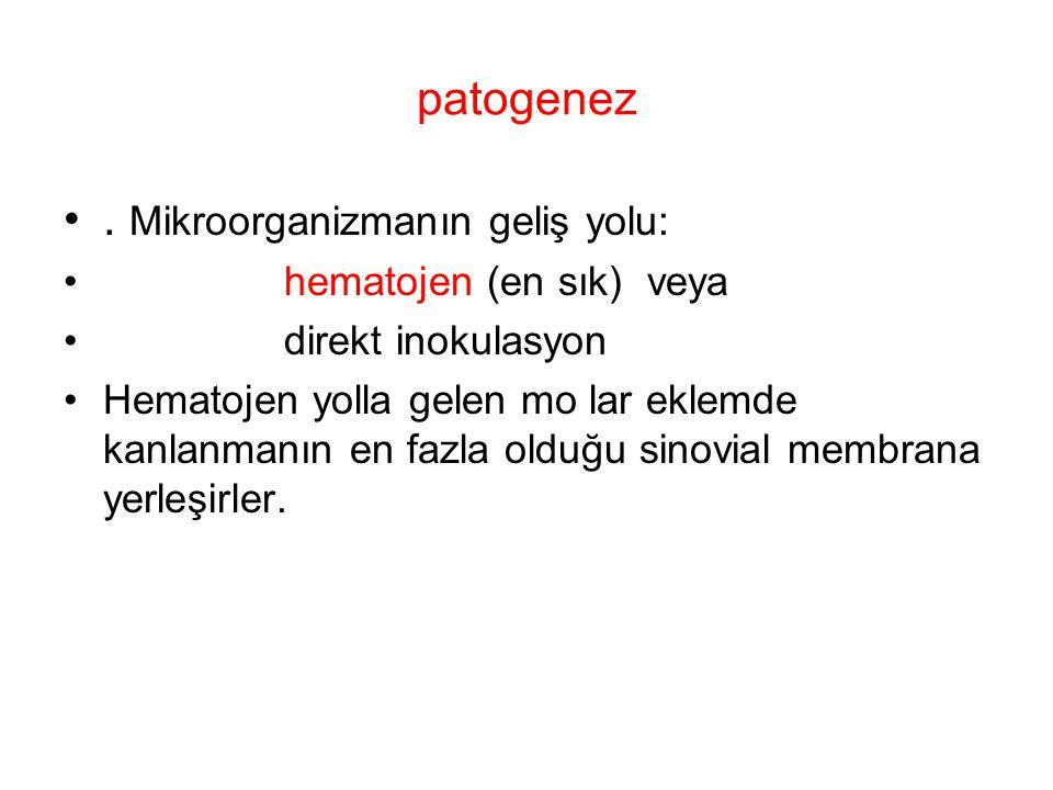 . Mikroorganizmanın geliş yolu: