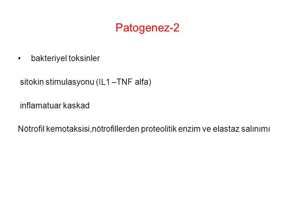 Patogenez-2 bakteriyel toksinler sitokin stimulasyonu (IL1 –TNF alfa)