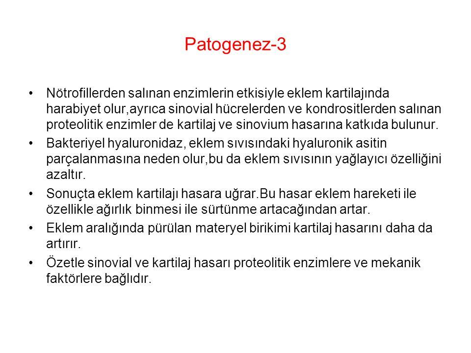 Patogenez-3