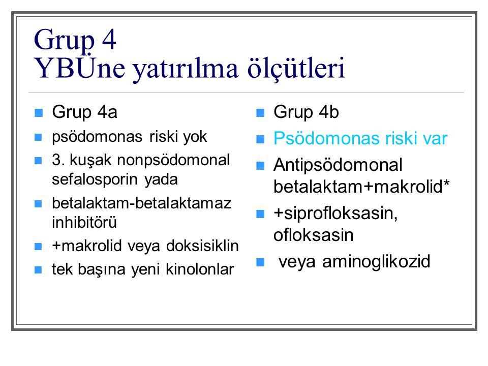 Grup 4 YBÜne yatırılma ölçütleri
