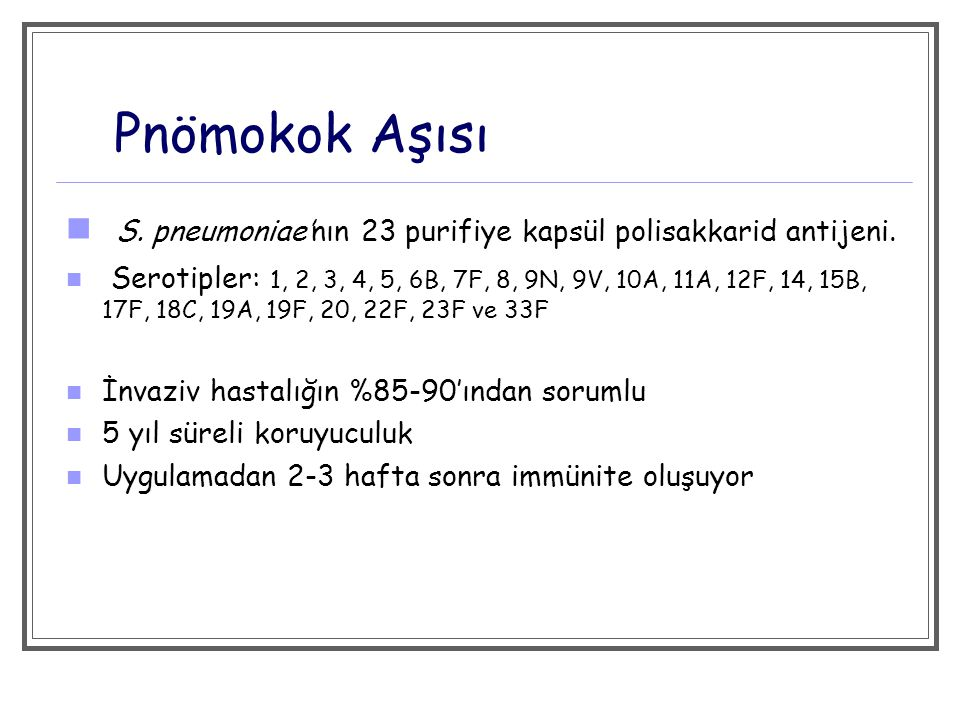 Pnömokok Aşısı S. pneumoniae'nın 23 purifiye kapsül polisakkarid antijeni.